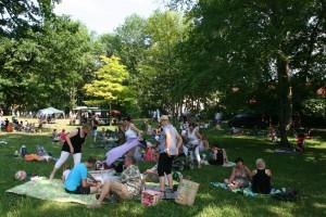 Picknickkonzert 2015 (10)